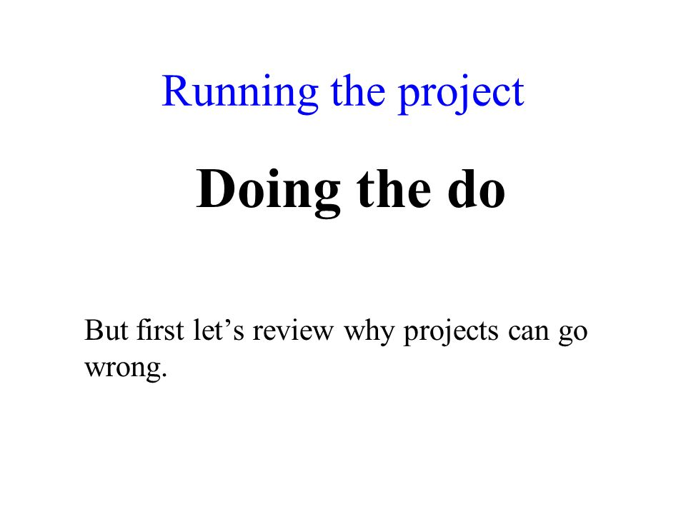 Running the project Doing the do But first lets review why projects can go wrong.