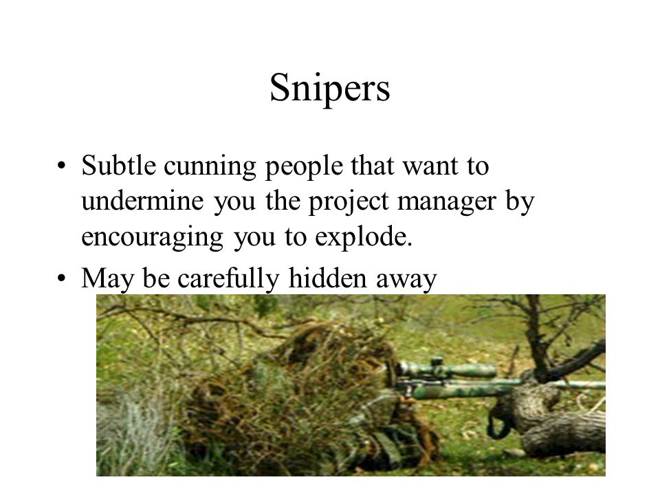 Snipers Subtle cunning people that want to undermine you the project manager by encouraging you to explode. May be carefully hidden away