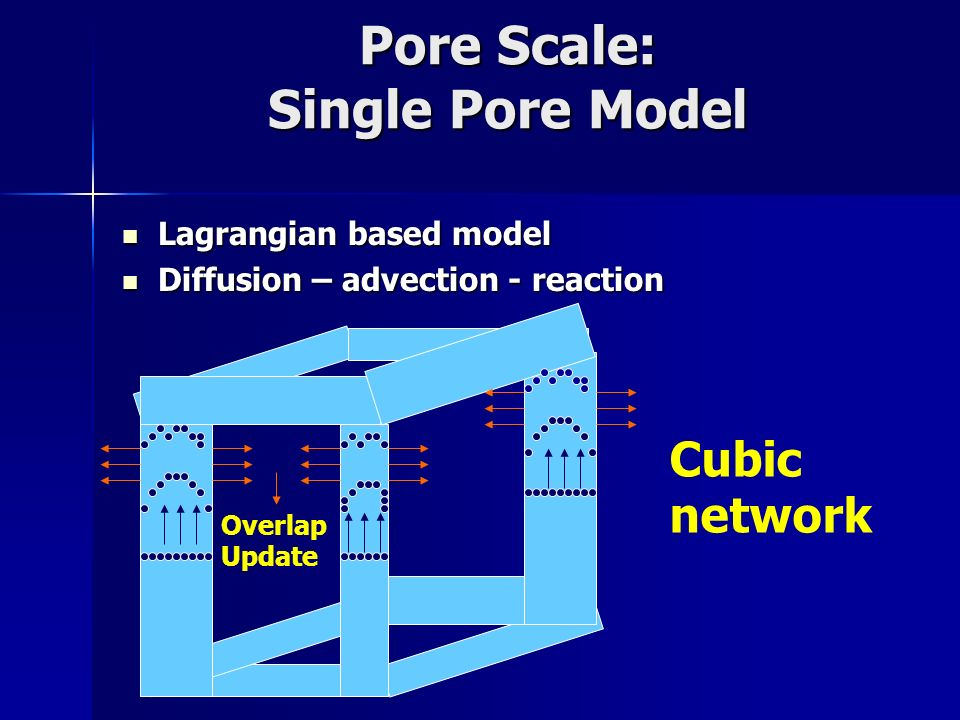 Pore Scale: Single Pore Model Lagrangian based model Lagrangian based model Diffusion – advection - reaction Diffusion – advection - reaction Overlap