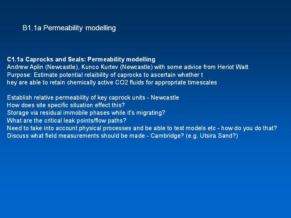 B1.1a Permeability modelling