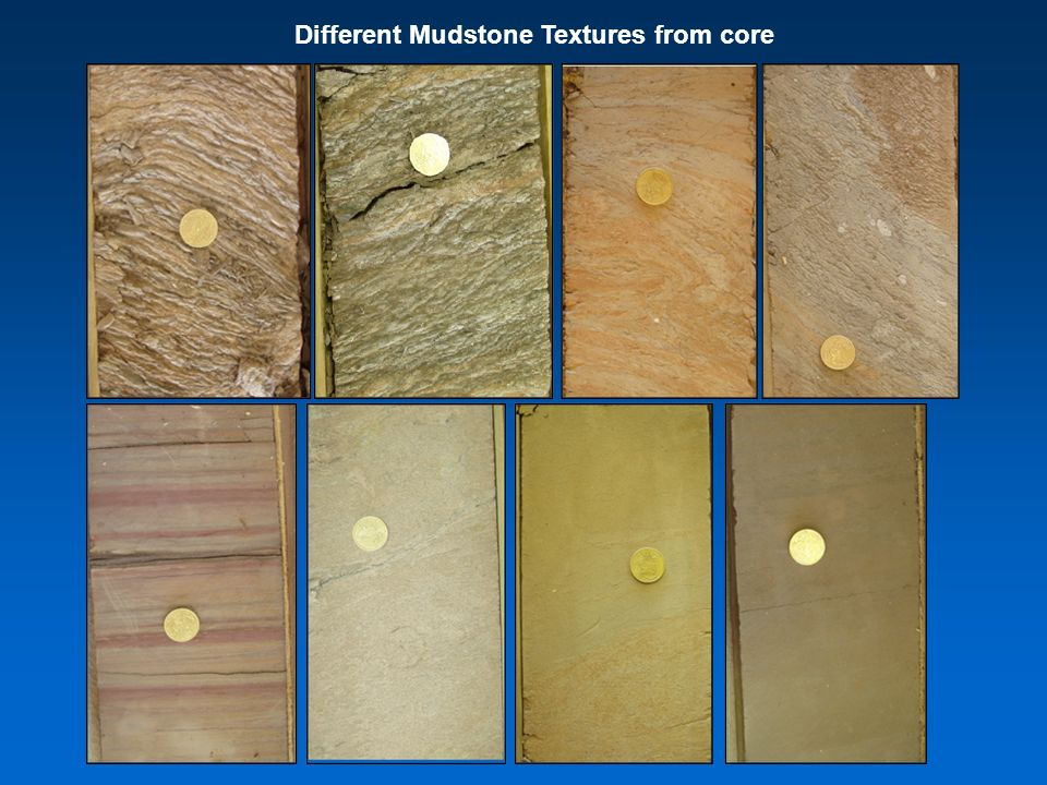 Different Mudstone Textures from core