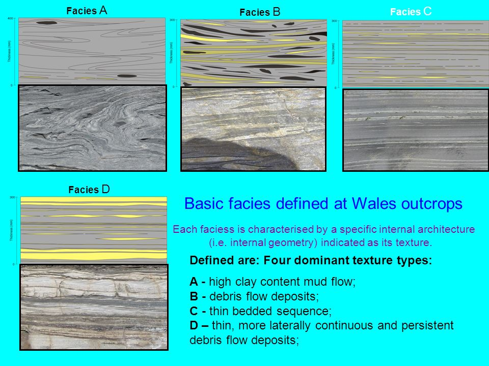 Facies B Facies C Facies A Facies D Defined are: Four dominant texture types: A - high clay content mud flow; B - debris flow deposits; C - thin bedde