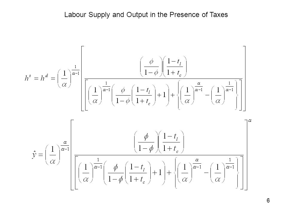 6 Labour Supply and Output in the Presence of Taxes