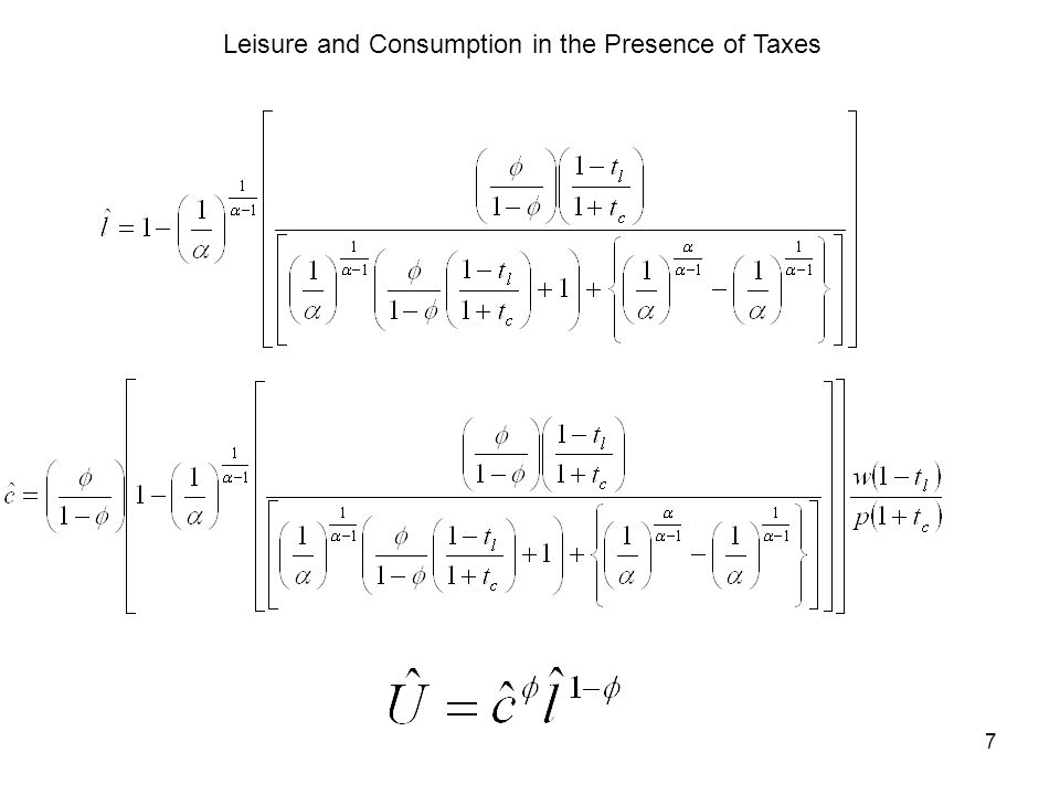 7 Leisure and Consumption in the Presence of Taxes