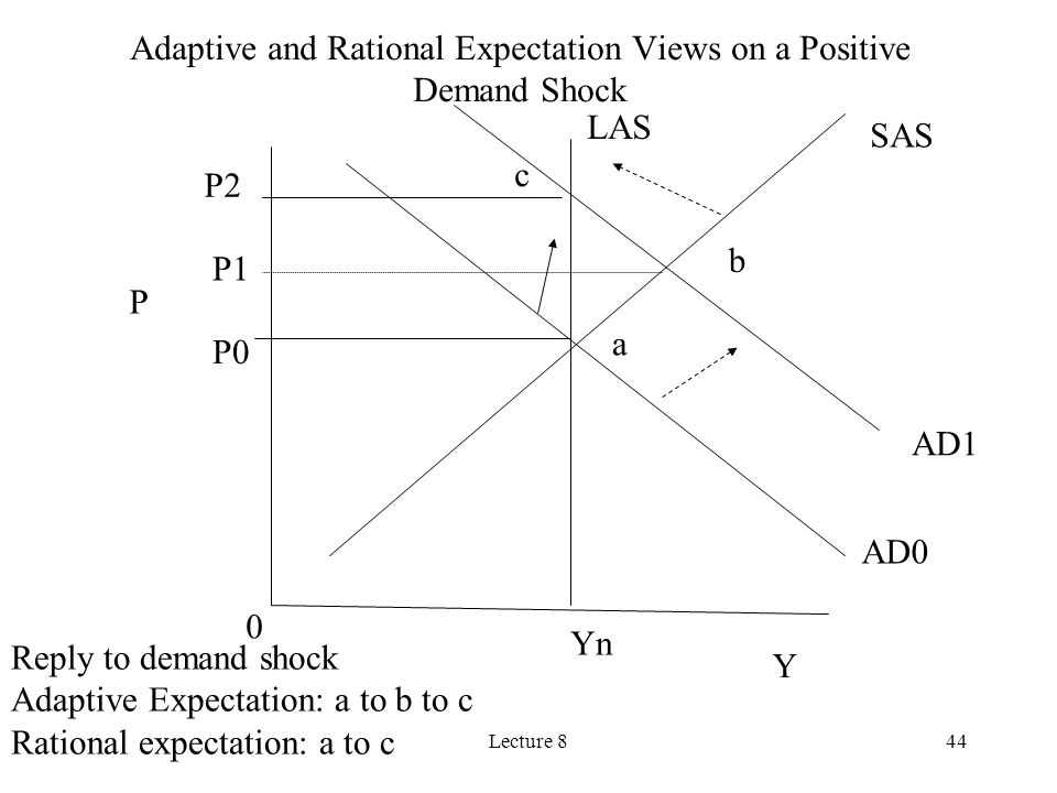 Lecture 844 P Y Yn AD0 AD1 LAS SAS a b c 0 Reply to demand shock Adaptive Expectation: a to b to c Rational expectation: a to c Adaptive and Rational