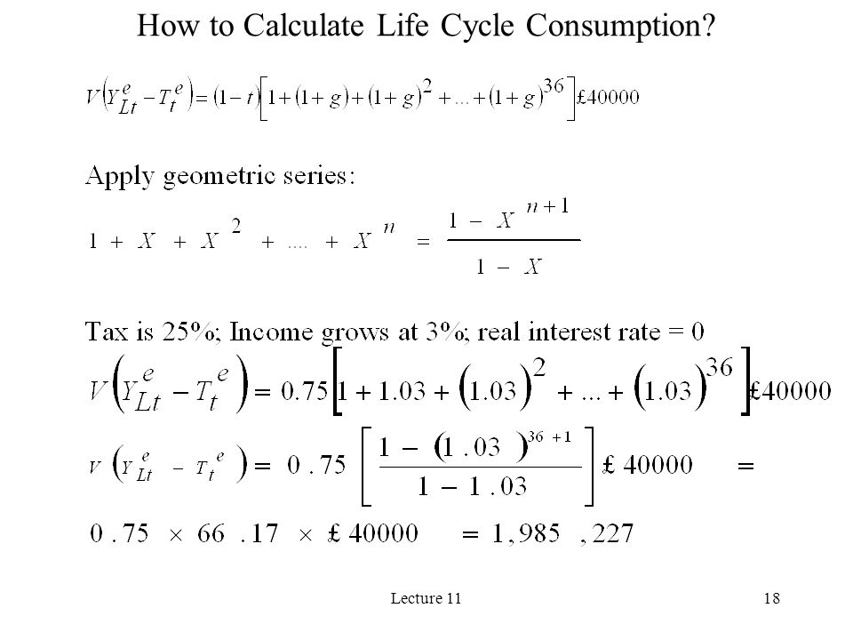 Lecture 1118 How to Calculate Life Cycle Consumption?