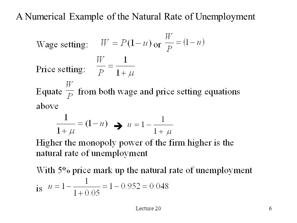 6 A Numerical Example of the Natural Rate of Unemployment