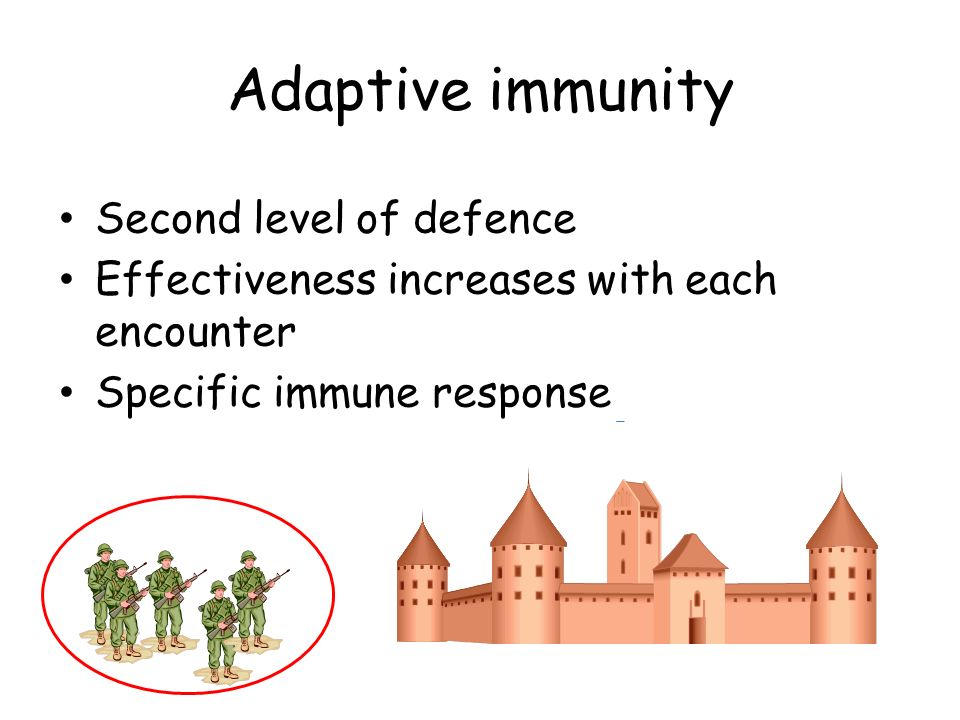 Adaptive immunity Second level of defence Effectiveness increases with each encounter Specific immune response