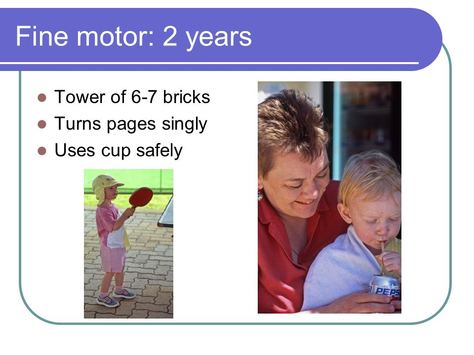 Fine motor: 2 years Tower of 6-7 bricks Turns pages singly Uses cup safely