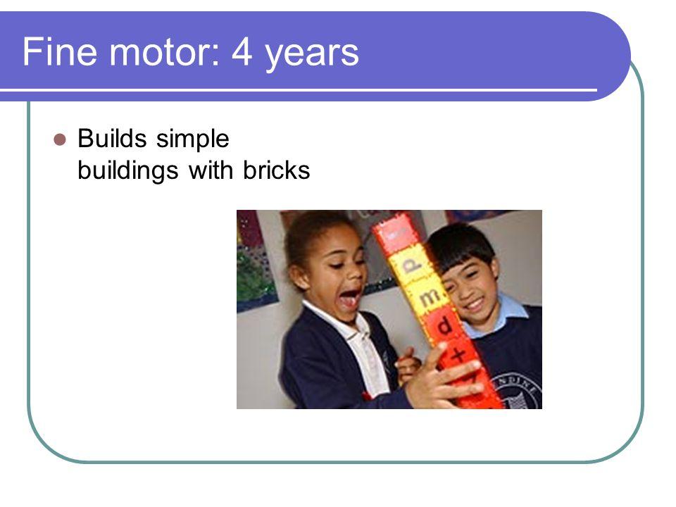 Fine motor: 4 years Builds simple buildings with bricks