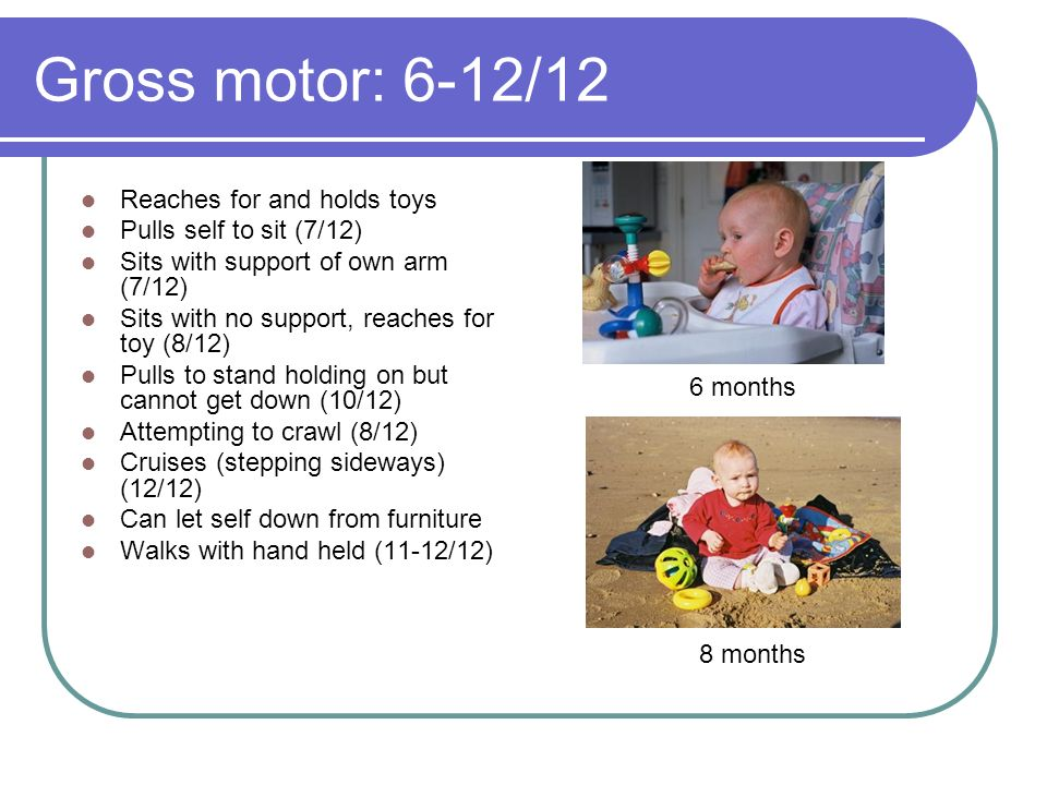Gross motor: 6-12/12 Reaches for and holds toys Pulls self to sit (7/12) Sits with support of own arm (7/12) Sits with no support, reaches for toy (8/12) Pulls to stand holding on but cannot get down (10/12) Attempting to crawl (8/12) Cruises (stepping sideways) (12/12) Can let self down from furniture Walks with hand held (11-12/12) 6 months 8 months