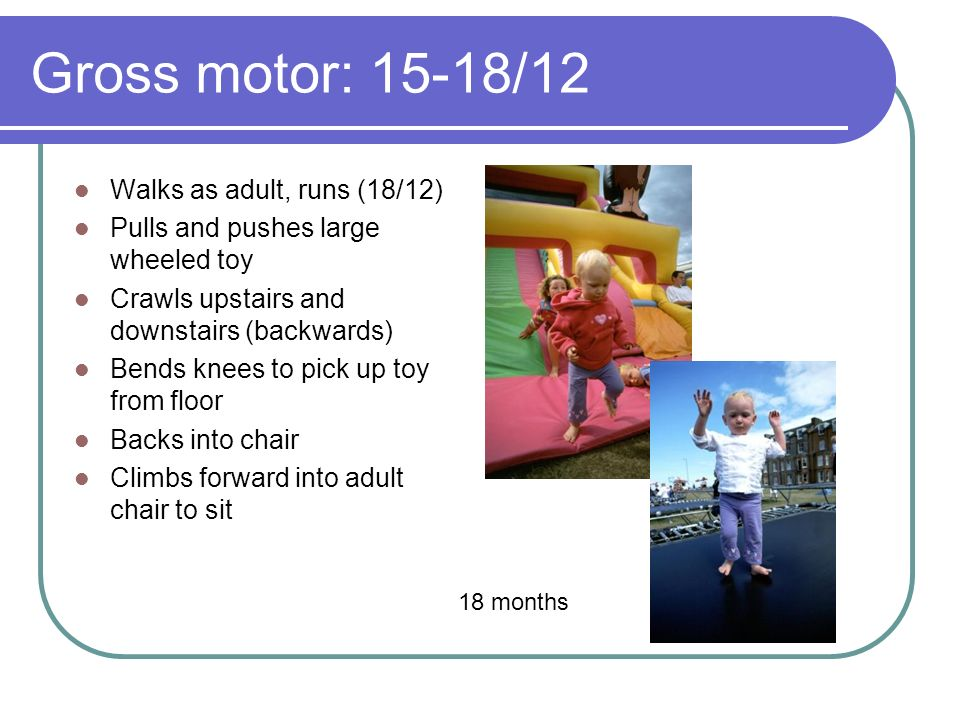 Gross motor: 15-18/12 Walks as adult, runs (18/12) Pulls and pushes large wheeled toy Crawls upstairs and downstairs (backwards) Bends knees to pick up toy from floor Backs into chair Climbs forward into adult chair to sit 18 months