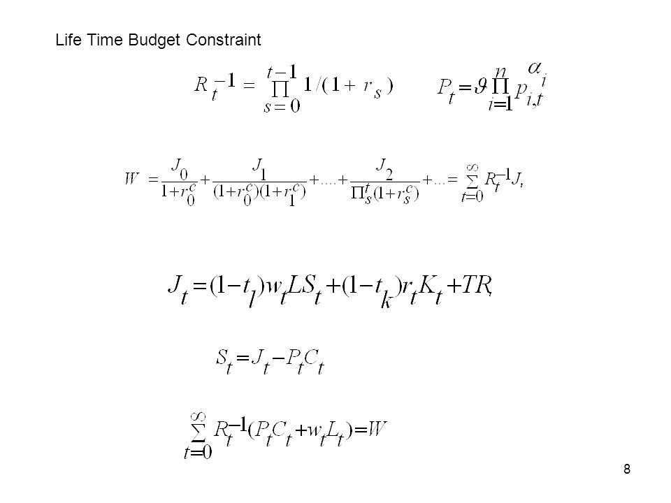 8 Life Time Budget Constraint