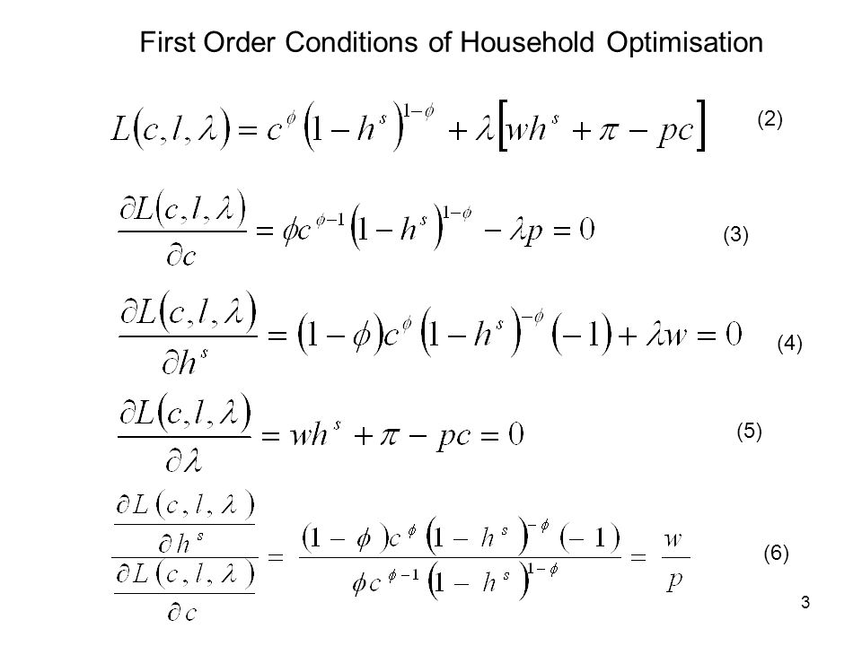3 (2) (3) (4) (5) (6) First Order Conditions of Household Optimisation