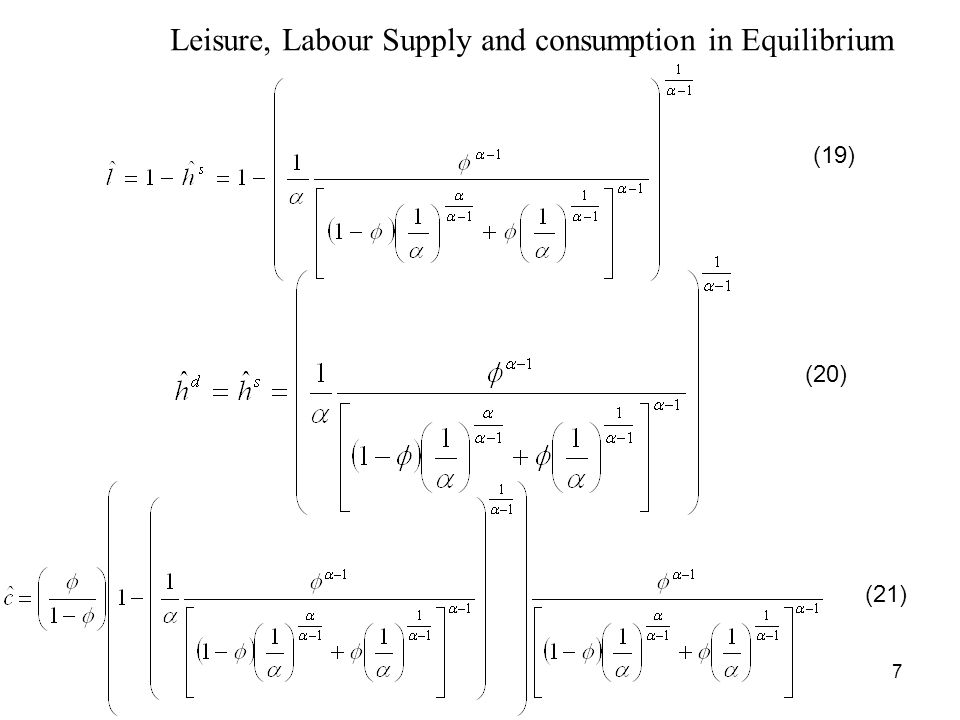 7 Leisure, Labour Supply and consumption in Equilibrium (19) (20) (21)