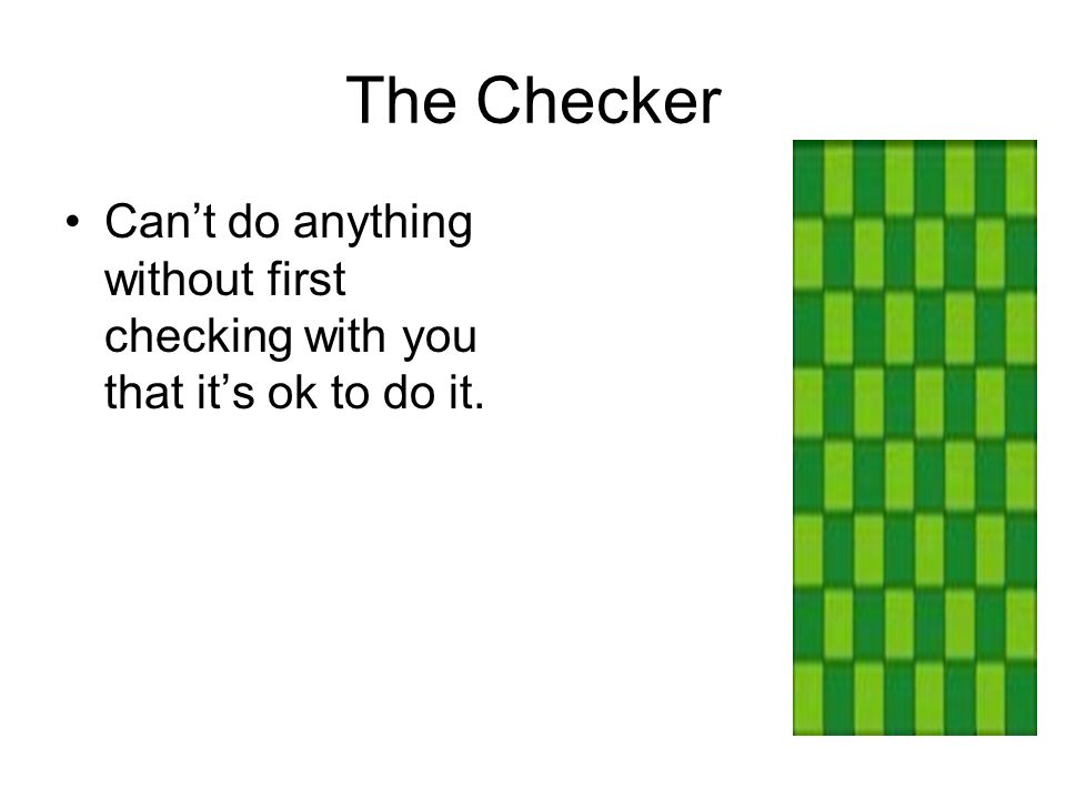 The Checker Cant do anything without first checking with you that its ok to do it.