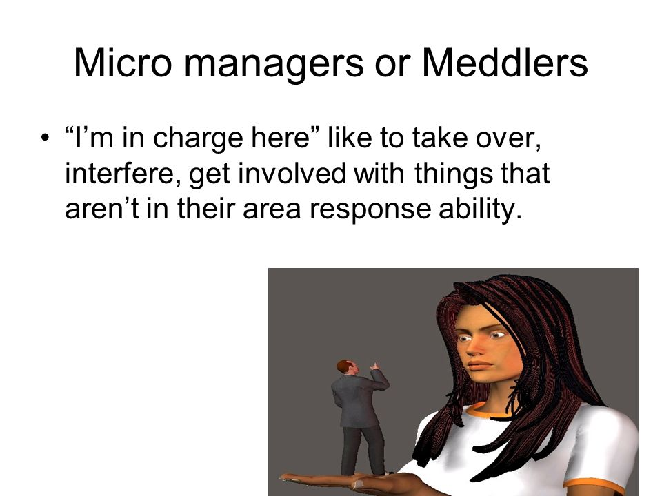 Micro managers or Meddlers Im in charge here like to take over, interfere, get involved with things that arent in their area response ability.