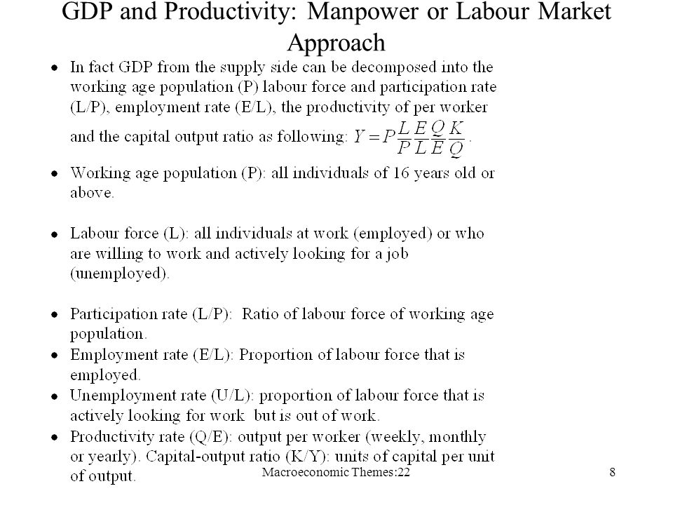 Macroeconomic Themes:228 GDP and Productivity: Manpower or Labour Market Approach