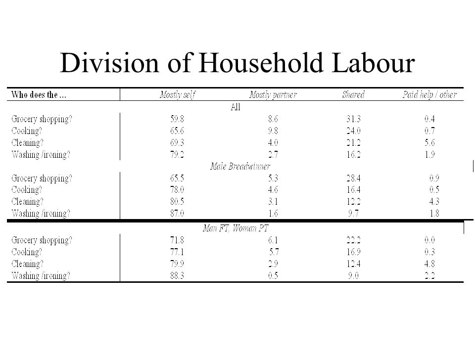 Division of Household Labour