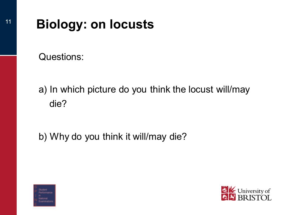 11 Biology: on locusts Questions: a) In which picture do you think the locust will/may die.