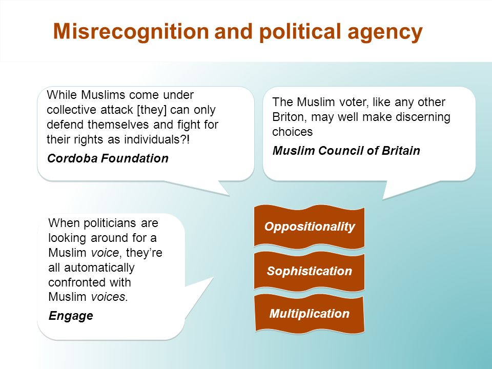Misrecognition and political agency The Muslim voter, like any other Briton, may well make discerning choices Muslim Council of Britain The Muslim voter, like any other Briton, may well make discerning choices Muslim Council of Britain Sophistication While Muslims come under collective attack [they] can only defend themselves and fight for their rights as individuals .