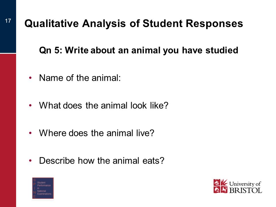 17 Qualitative Analysis of Student Responses Qn 5: Write about an animal you have studied Name of the animal: What does the animal look like? Where do