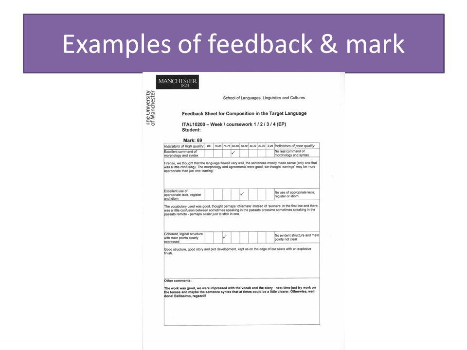 Examples of feedback & mark