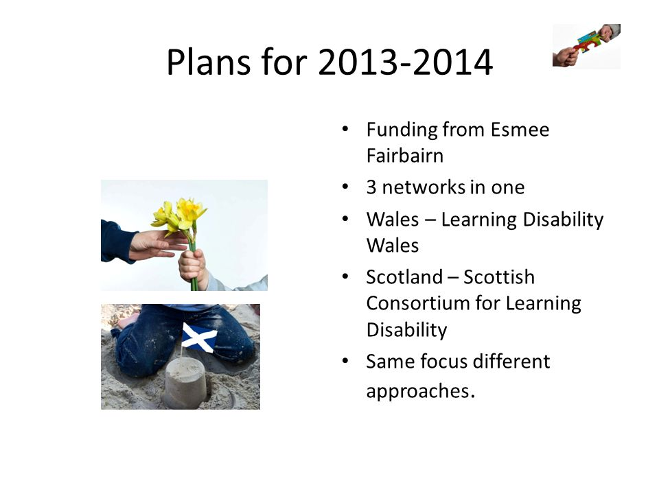 Plans for 2013-2014 Funding from Esmee Fairbairn 3 networks in one Wales – Learning Disability Wales Scotland – Scottish Consortium for Learning Disab