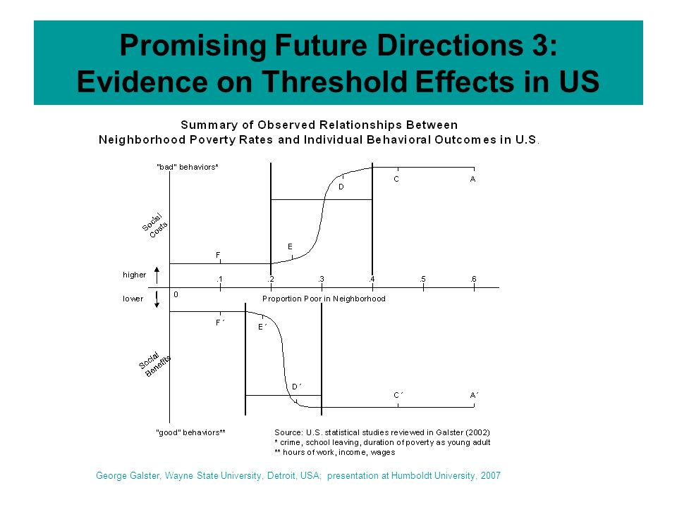 Promising Future Directions 3: Evidence on Threshold Effects in US George Galster, Wayne State University, Detroit, USA; presentation at Humboldt University, 2007