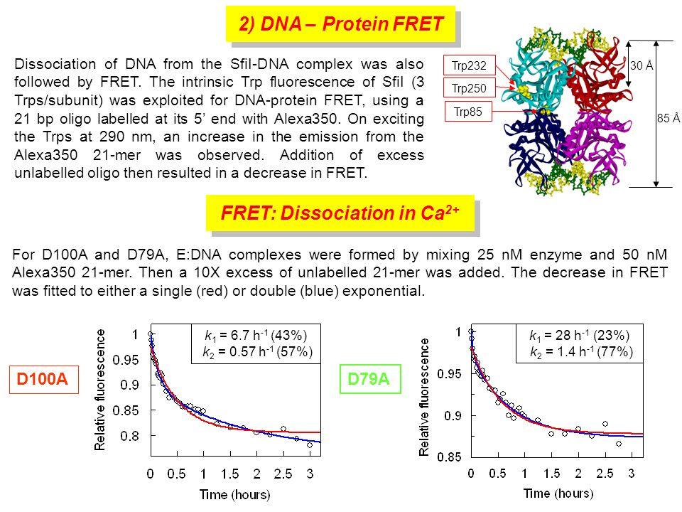 FRET: Association and Dissociation in Mg 2+ FRET was also used to follow association and dissociation in Mg 2+ -buffer.
