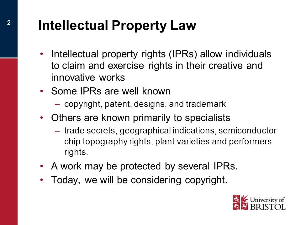 2 Intellectual Property Law Intellectual property rights (IPRs) allow individuals to claim and exercise rights in their creative and innovative works