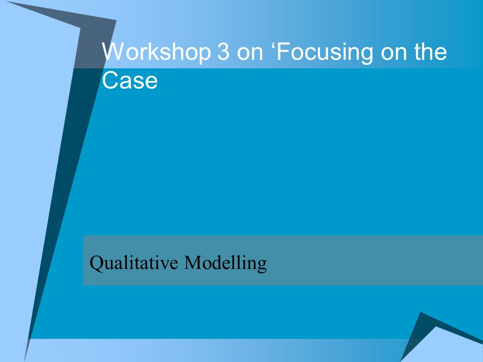 Workshop 3 on Focusing on the Case Qualitative Modelling