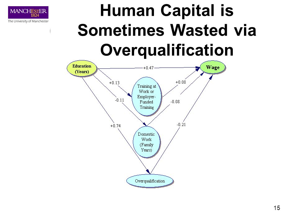 15 Human Capital is Sometimes Wasted via Overqualification