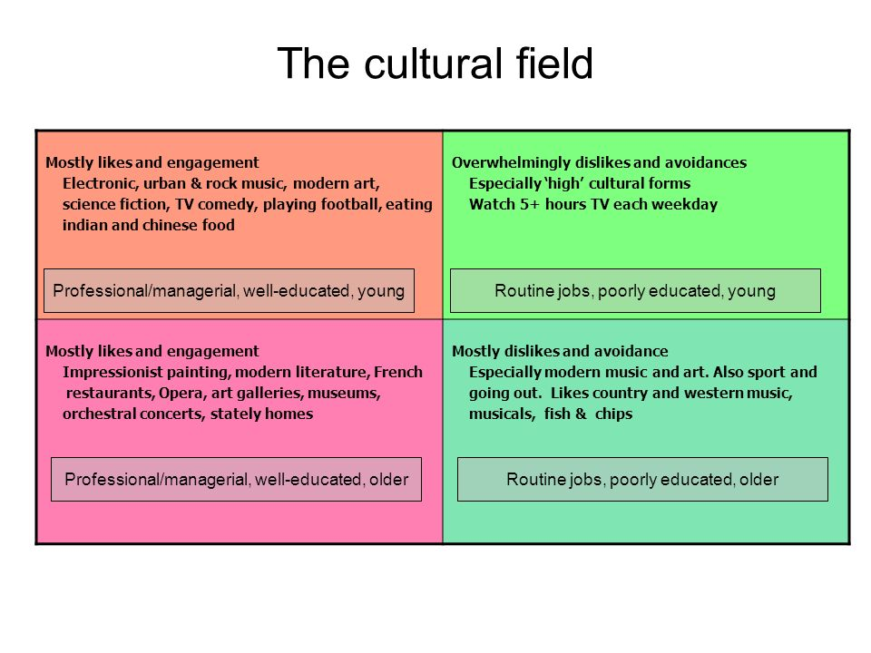 The cultural field Mostly likes and engagement Electronic, urban & rock music, modern art, science fiction, TV comedy, playing football, eating indian and chinese food Overwhelmingly dislikes and avoidances Especially high cultural forms Watch 5+ hours TV each weekday Mostly likes and engagement Impressionist painting, modern literature, French restaurants, Opera, art galleries, museums, orchestral concerts, stately homes Mostly dislikes and avoidance Especially modern music and art.