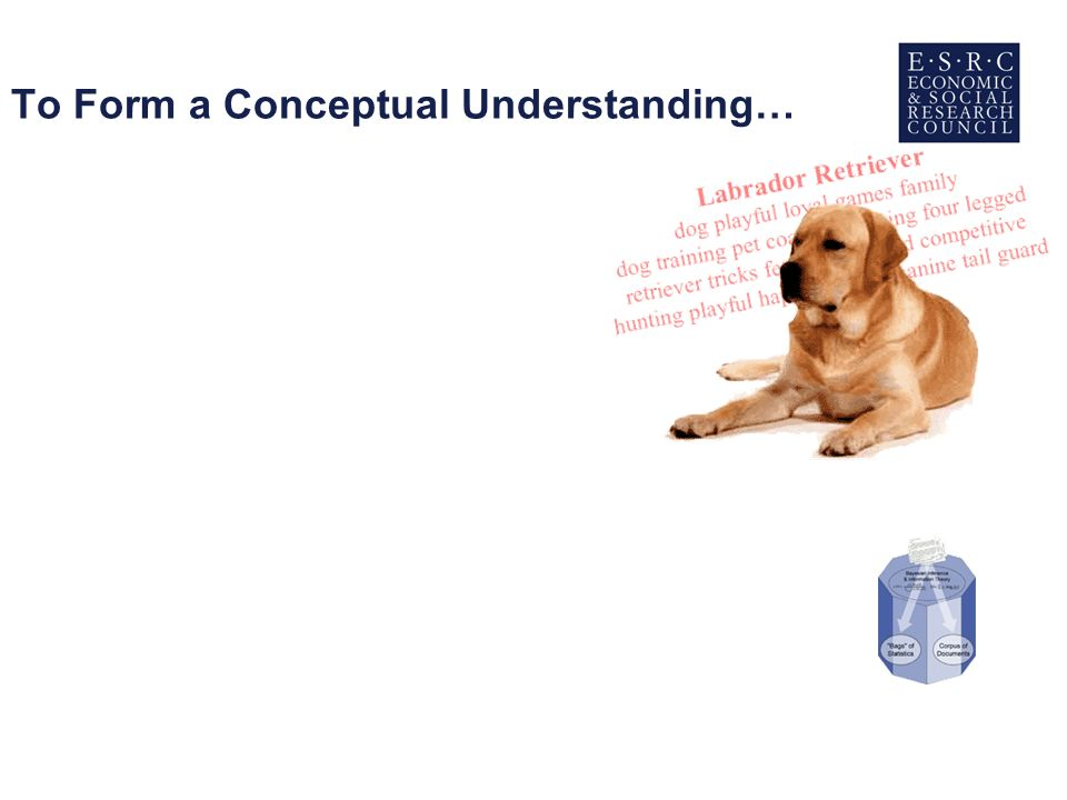 To Form a Conceptual Understanding…