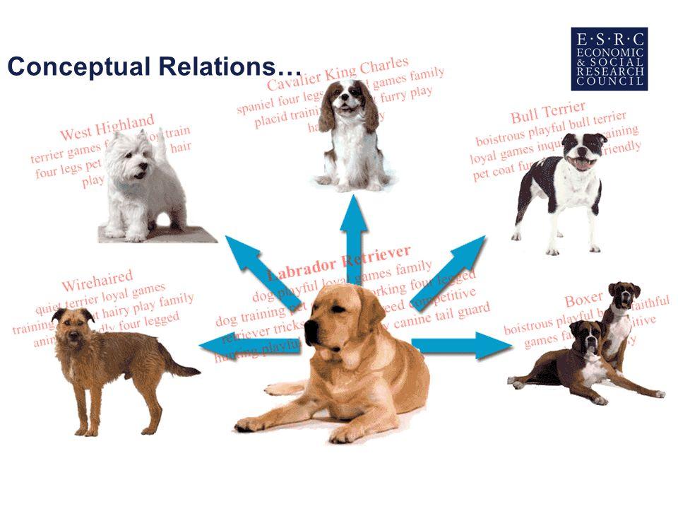 Conceptual Relations…