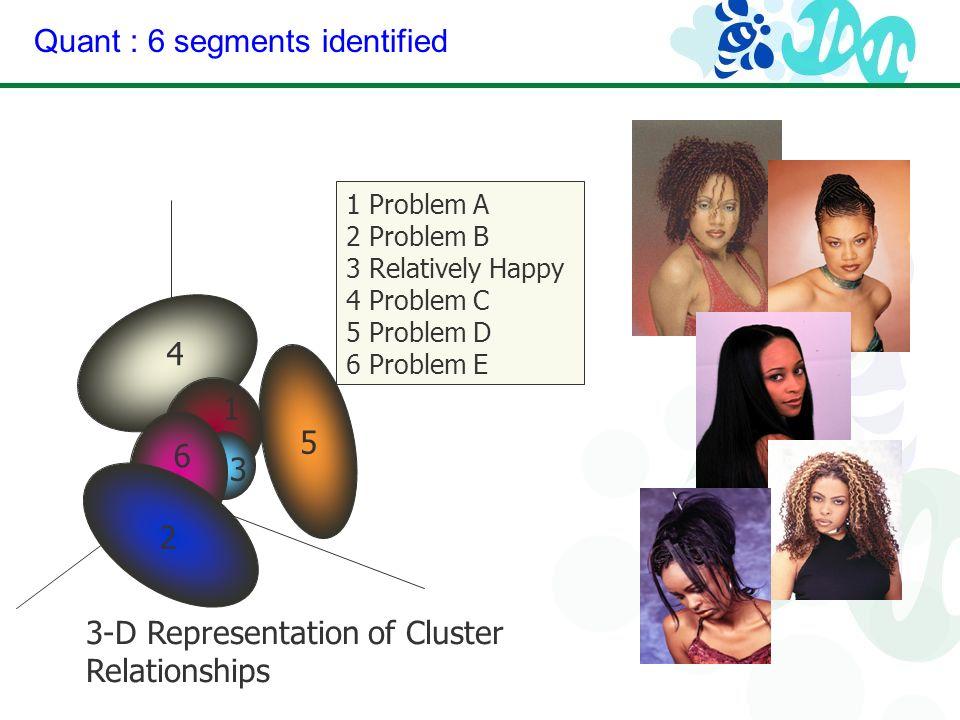 Quant : 6 segments identified 3-D Representation of Cluster Relationships 1 2 3 4 5 6 1 Problem A 2 Problem B 3 Relatively Happy 4 Problem C 5 Problem