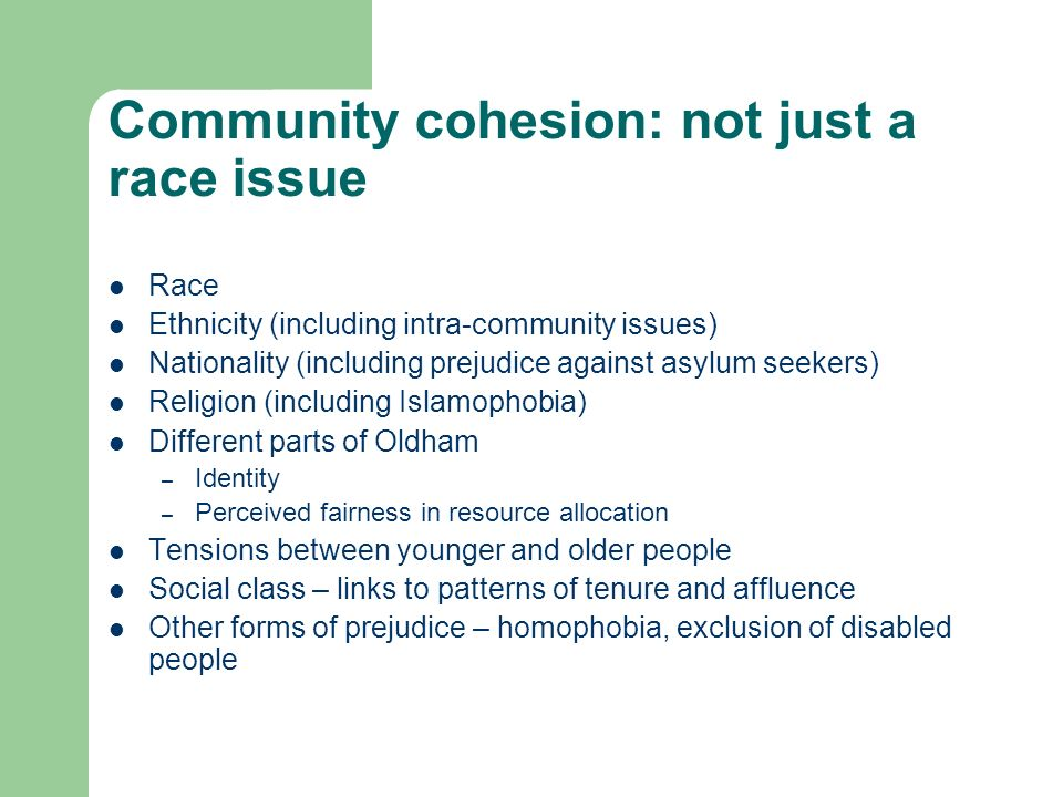 Community cohesion: not just a race issue Race Ethnicity (including intra-community issues) Nationality (including prejudice against asylum seekers) Religion (including Islamophobia) Different parts of Oldham – Identity – Perceived fairness in resource allocation Tensions between younger and older people Social class – links to patterns of tenure and affluence Other forms of prejudice – homophobia, exclusion of disabled people