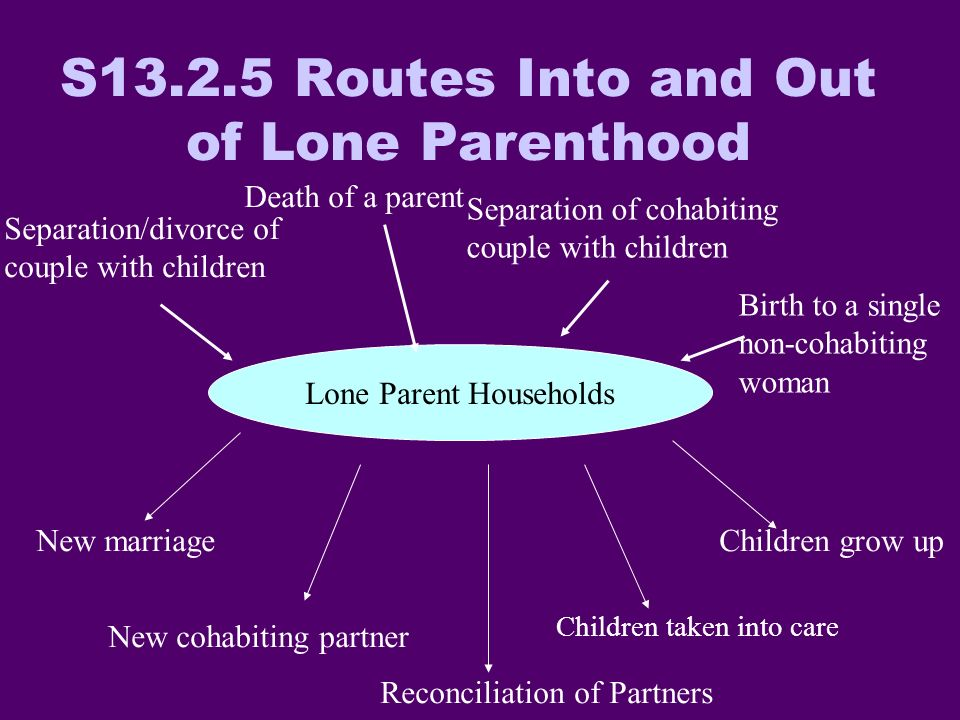 Lone Parent Households Separation/divorce of couple with children Death of a parent Separation of cohabiting couple with children Birth to a single non-cohabiting woman New marriage New cohabiting partner Reconciliation of Partners Children grow up Children taken into care S Routes Into and Out of Lone Parenthood