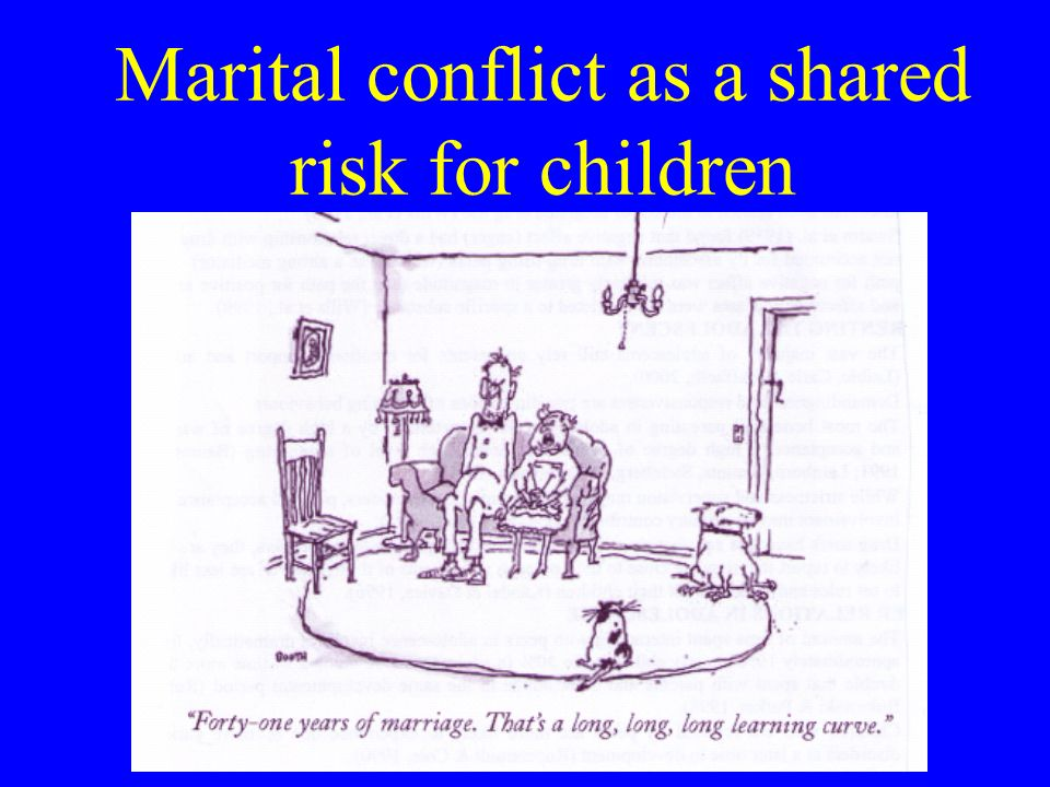 Marital conflict as a shared risk for children