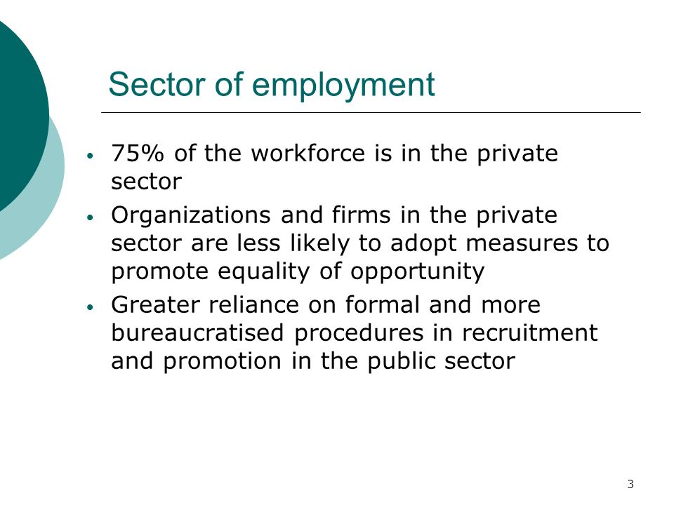3 Sector of employment 75% of the workforce is in the private sector Organizations and firms in the private sector are less likely to adopt measures to promote equality of opportunity Greater reliance on formal and more bureaucratised procedures in recruitment and promotion in the public sector