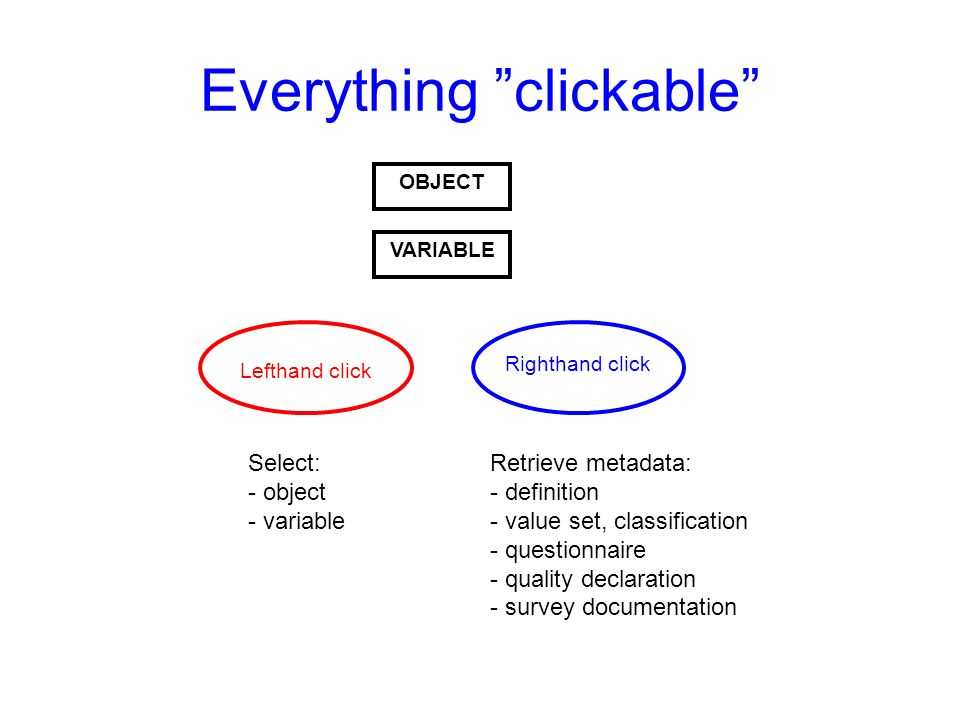 Everything clickable OBJECT VARIABLE Lefthand click Righthand click Select: - object - variable Retrieve metadata: - definition - value set, classification - questionnaire - quality declaration - survey documentation