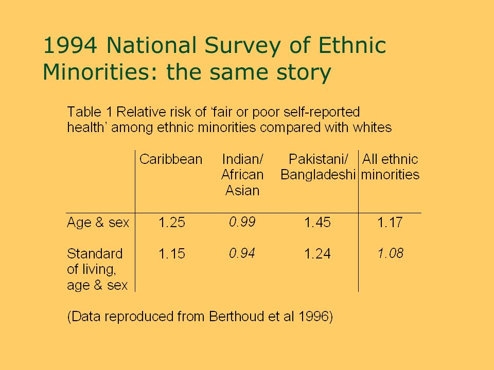 1994 National Survey of Ethnic Minorities: the same story