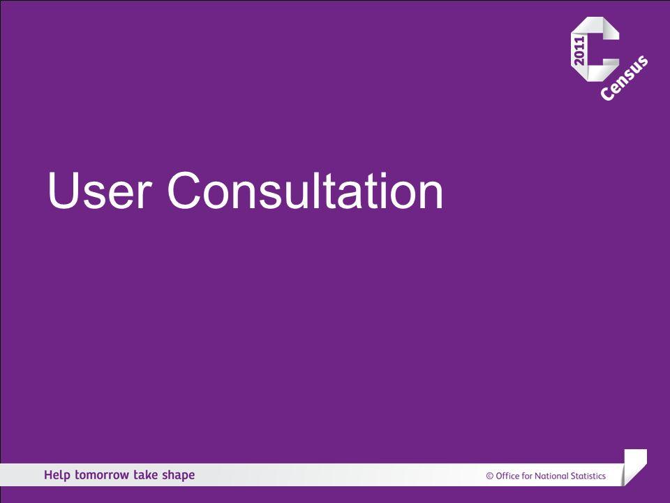 User Consultation