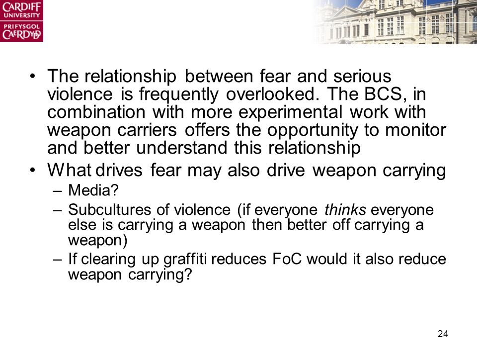 24 The relationship between fear and serious violence is frequently overlooked.