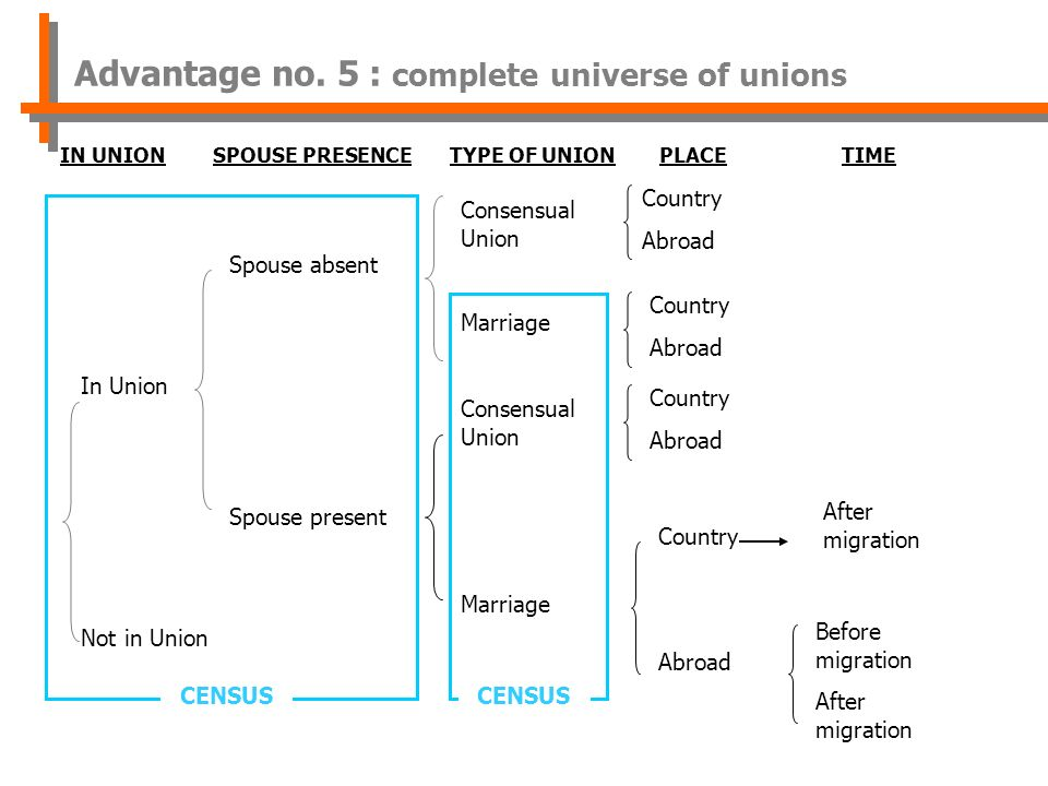 In Union Not in Union Spouse absent Spouse present Consensual Union Marriage Consensual Union Marriage IN UNION SPOUSE PRESENCETYPE OF UNIONPLACE TIME Country Abroad Country Abroad After migration Before migration After migration Country Abroad Country Abroad CENSUS Advantage no.