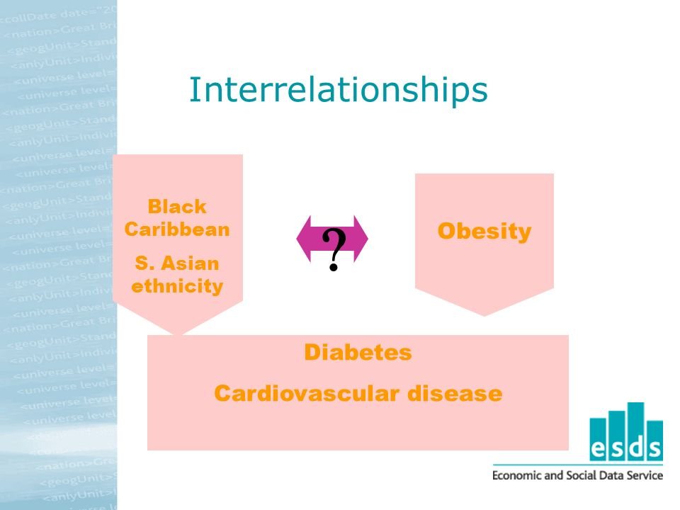 Interrelationships Diabetes Cardiovascular disease Black Caribbean S. Asian ethnicity Obesity