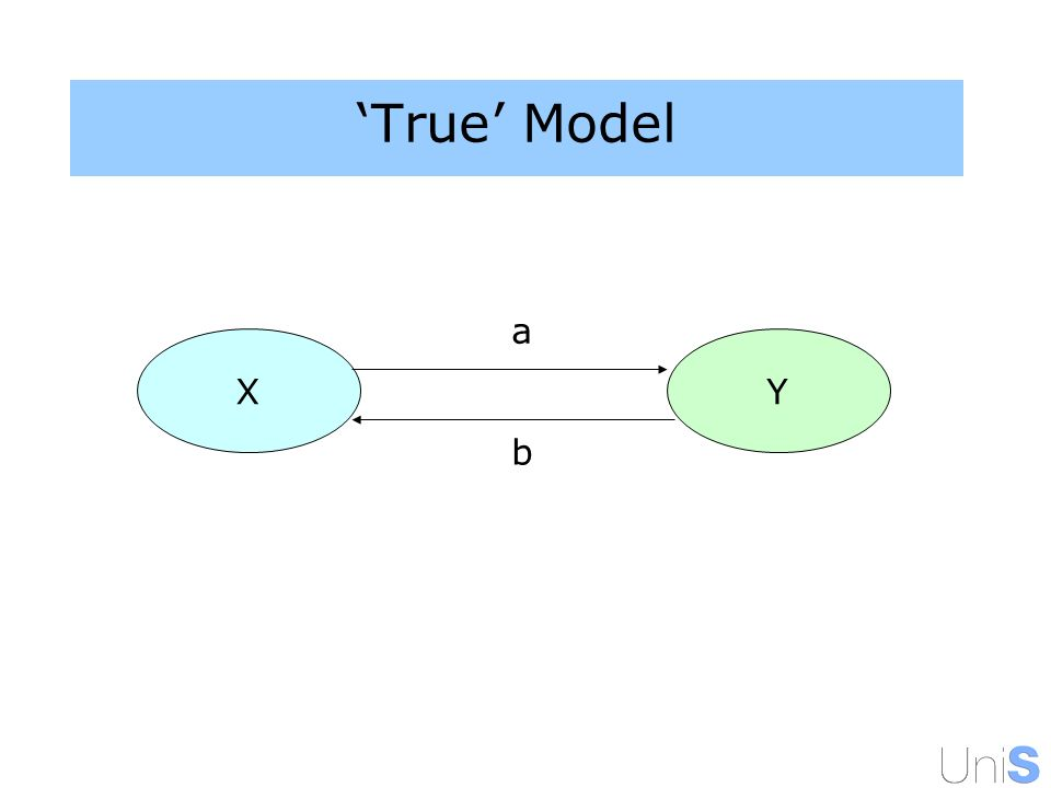 True Model XY a b