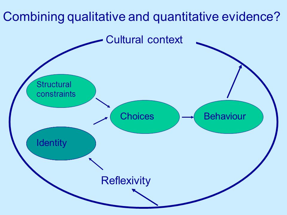 Structural constraints ChoicesBehaviour Cultural context Reflexivity Identity Combining qualitative and quantitative evidence.