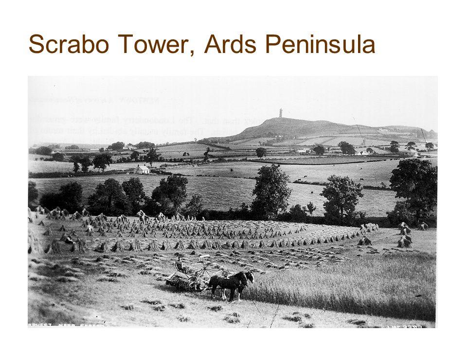 Scrabo Tower, Ards Peninsula